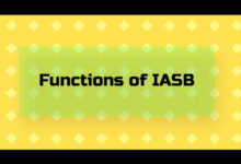 functions of IASB