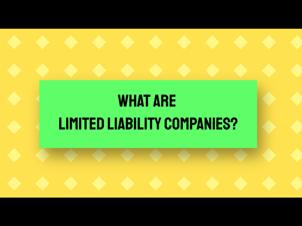 limited liabilities companies