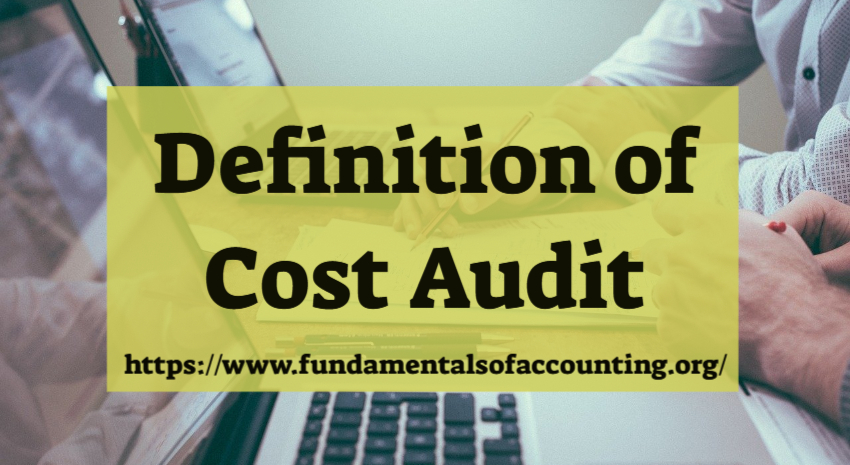 definition of cost audit
