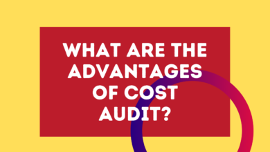 advantages of cost audit