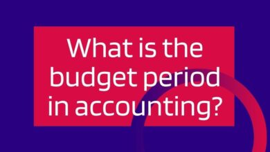 what is the budget period